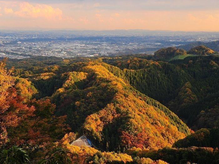 高尾山から見える景観