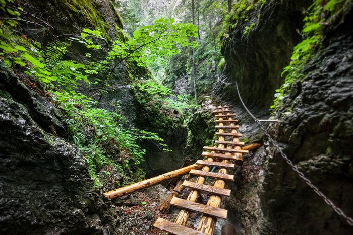 山の岩道にかかる木の橋