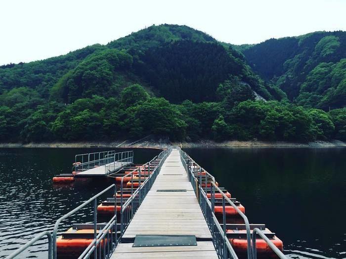 三頭山の揺れ動く橋