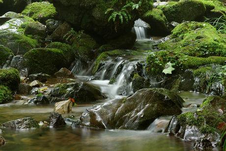 御岳山の川
