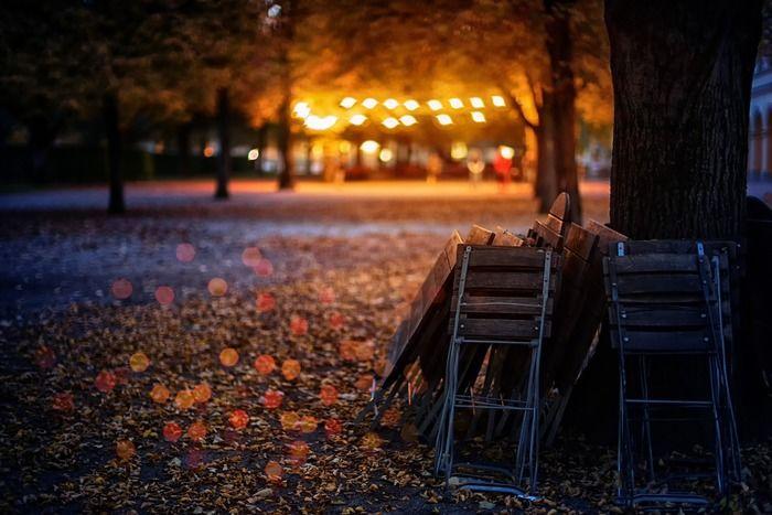 遠くに灯りの見える夜の公園