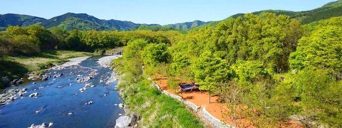 リバーサイド長瀞オートキャンプ場の川と豊な緑