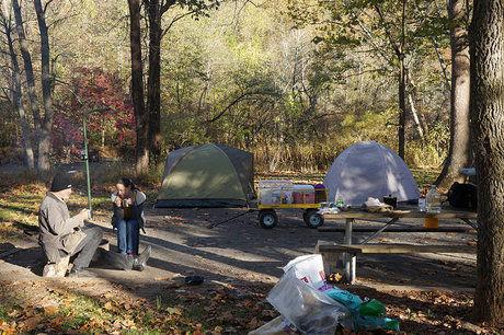 林間サイトにテントを張り準備するカップル