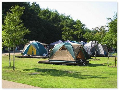 スチールの森のテントサイト