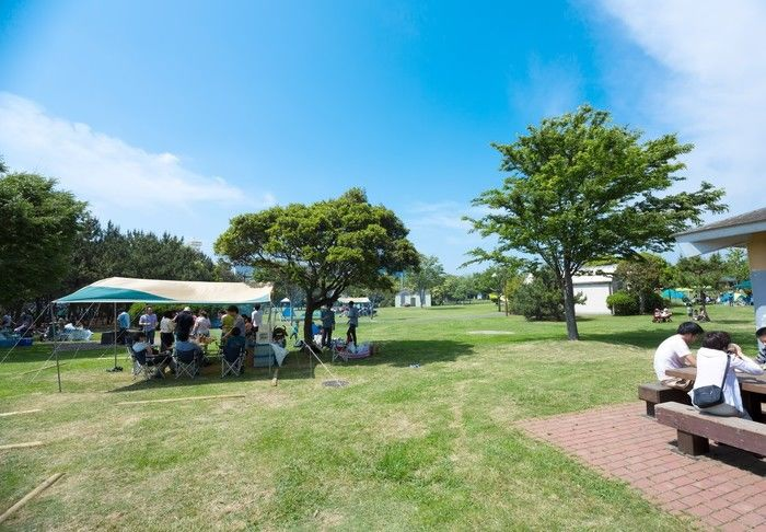 キャンプ場の芝生の広場