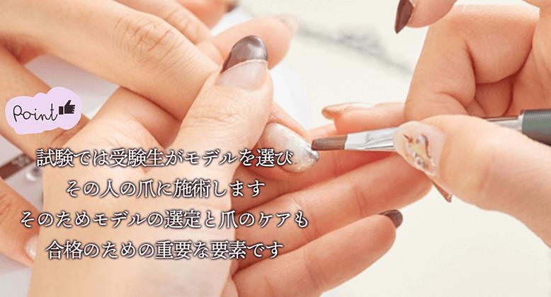 point 試験では受験生がモデルを選びその人の爪に施術します。そのためモデルの選定と爪のケアも合格のための重要な要素です