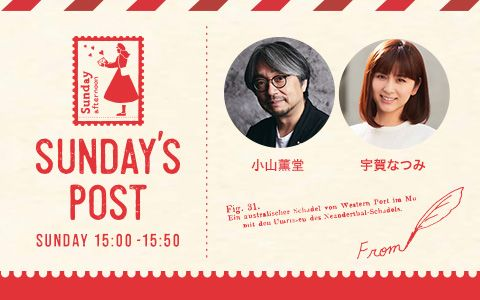 日本郵便 SUNDAY'S POST