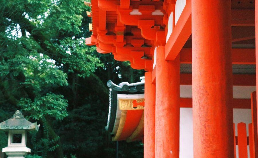 太宰府天満宮など、歴史的文化財・伝統建築の修復保全を手掛ける建築会社の事業承継