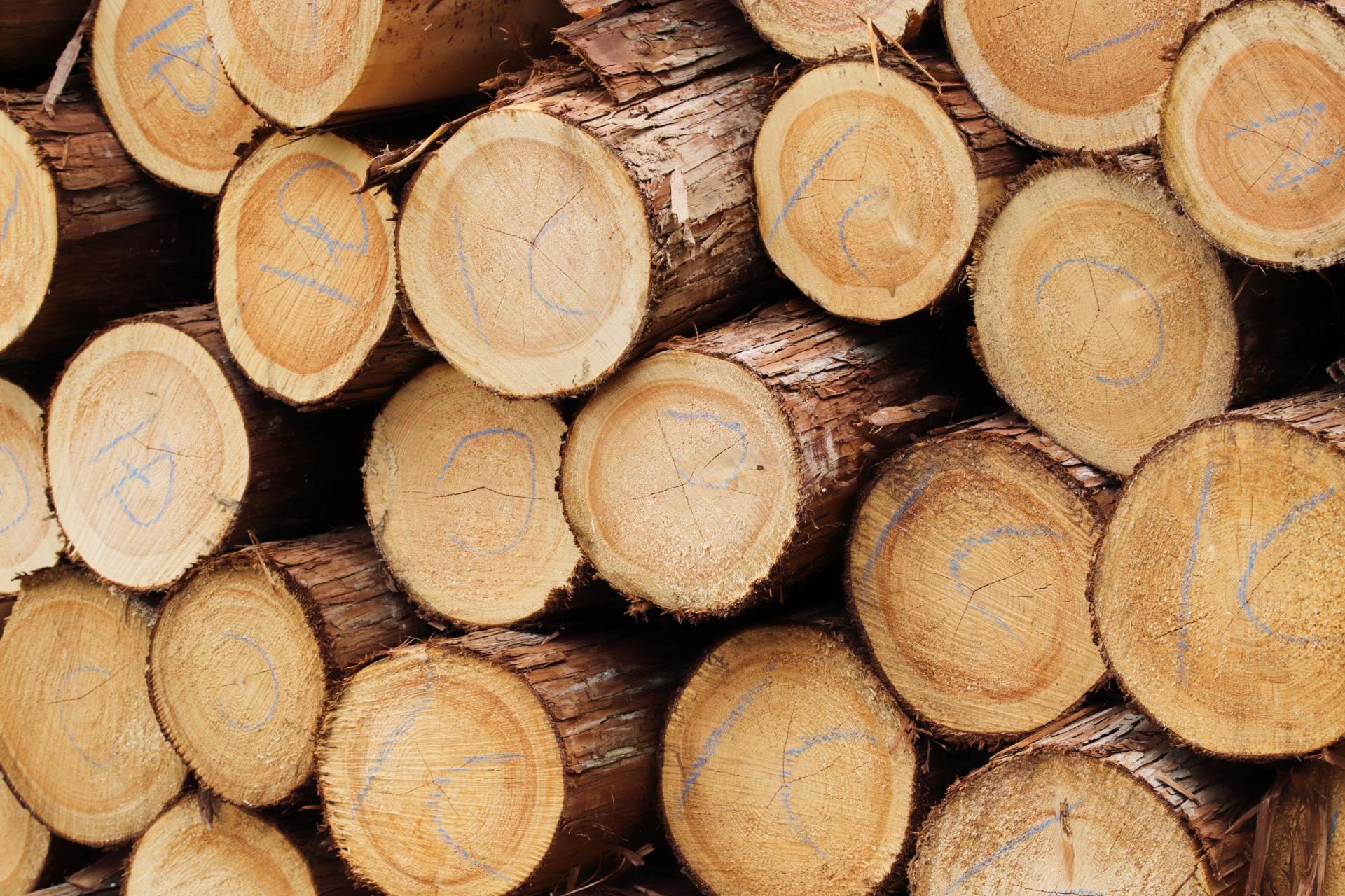 木材・木製品に関わる製造業の株式譲渡
