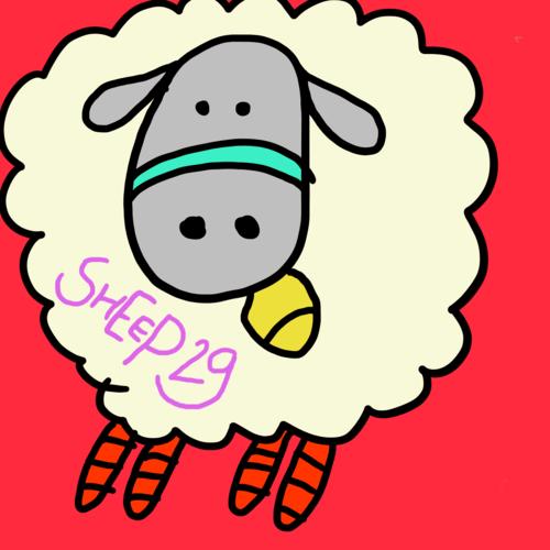 sheep29
