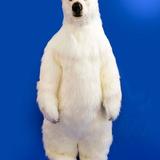 polar_bear_tech