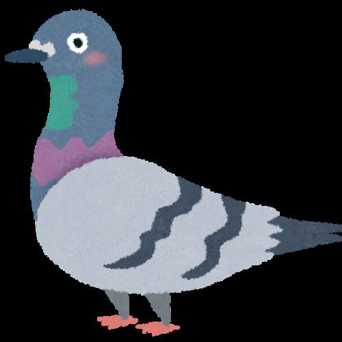pigeon_hack