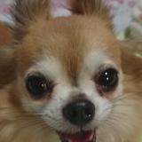 yusuke-ka