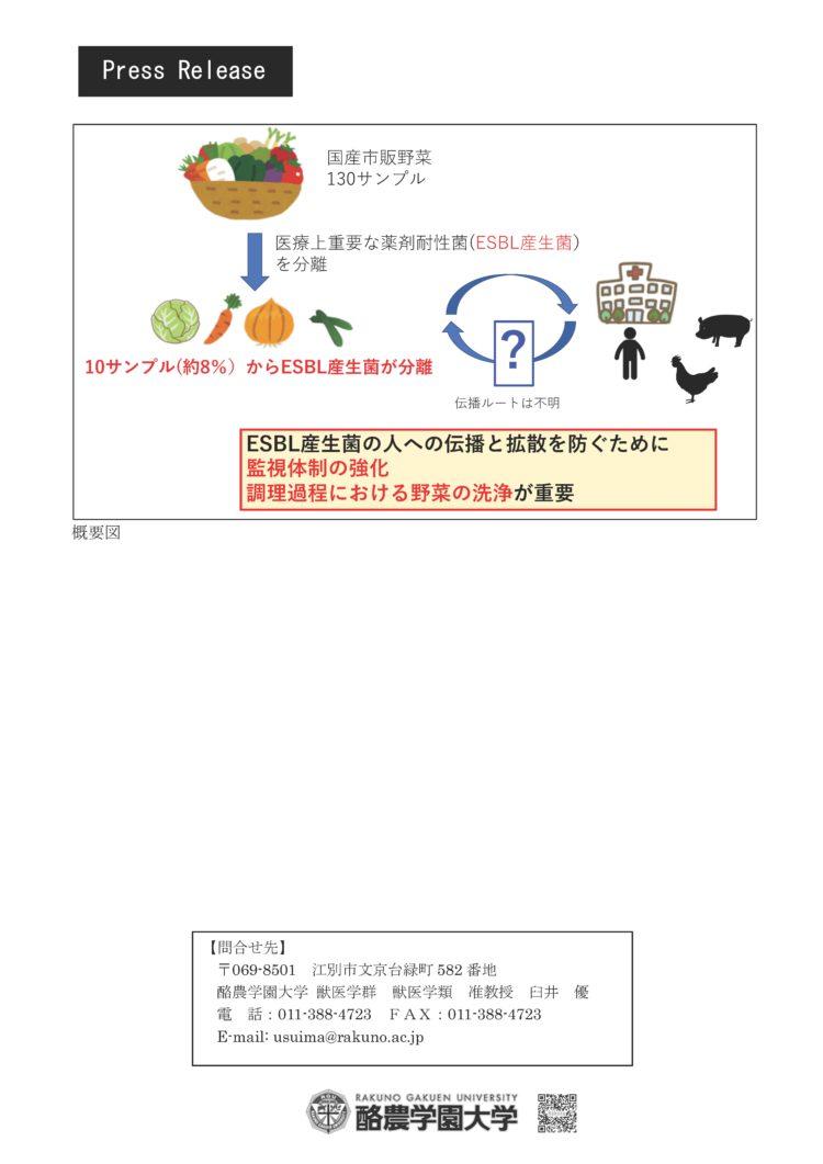 【プレスリリース】国産市販野菜の8%から薬剤耐性菌を検出(獣医学類 田村豊教授、臼井優准教授)