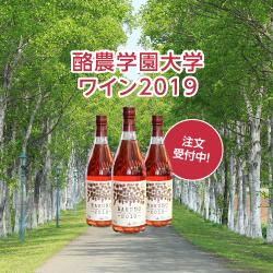 2019年度ワイン販売開始
