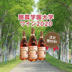 酪農学園大学ワイン2020発売開始!