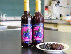 ハスカップの果皮(搾汁残渣)を用いたワインの製品化に成功 (大学院修士課程1年前野奈緒子さん)
