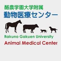 附属動物医療センター