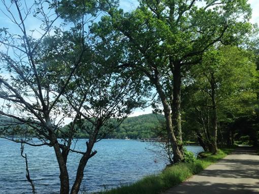 【長野】ほとりぐらし 森と水辺が同時に得られる場所