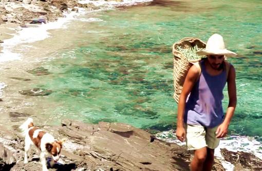 「島暮らし」を島で学ぶ健康長寿の秘密