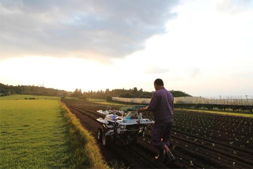 美しい町で、農の匠を継承する 鳥取県大山町で新規就農者を募集