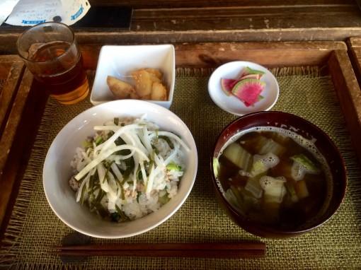 食の野望 SYOKU-YABO農園