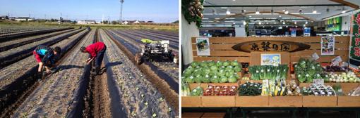 独自の経営哲学を持つ農家さんで、農業というビジネスを学ぶ1カ月