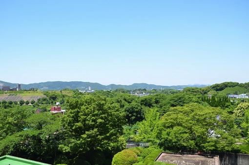【締切:8月13日】優しさあふれる田川の魅力を発信するフォトグラファーとライターを募集!