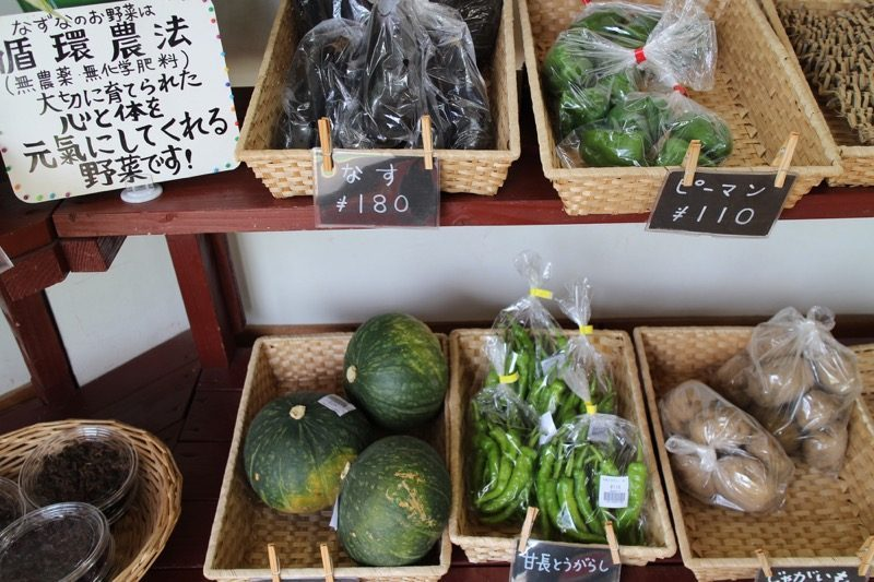大分県臼杵市に行ってきました