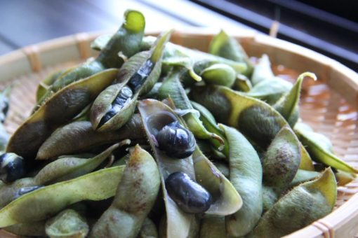 ビールの準備はOK?芳醇なコクと風味!枝豆の最高級、黒枝豆の季節