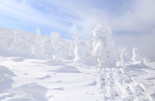 はじめての「樹氷」〜蔵王はすごかった〜