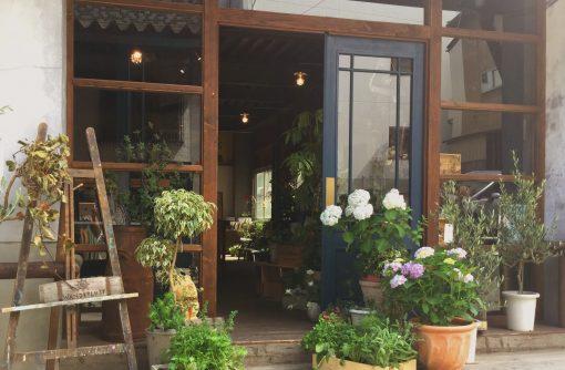 合歓の木や、オリーブ、パンジーや紫陽花の鉢植えなど、季節の植物に彩られた玄関口が目印。