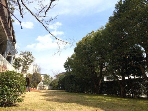 神戸市東灘区森北町 約45平米