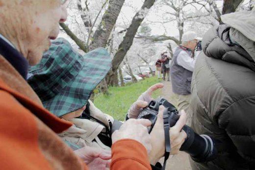 満開の桜と写真講座