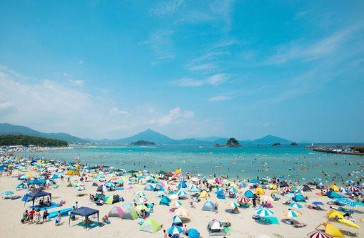 日本唯一の製法「若狭の白ちくわ」