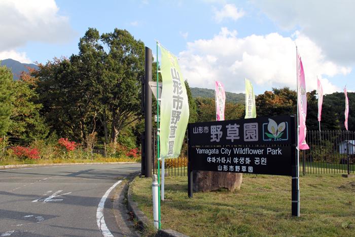 自然の大博物館「野草園」