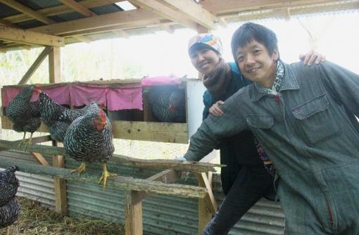 【豊島】自然卵ヨベル 吉野聖さん、桃子さん 50羽の鶏と1日2,500円の暮らし