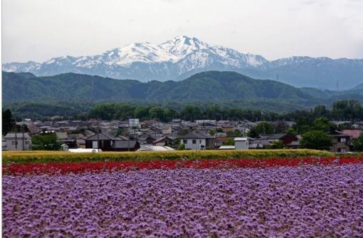 7/13(金)@東京「白山加賀の魅力・移住体験説明会」