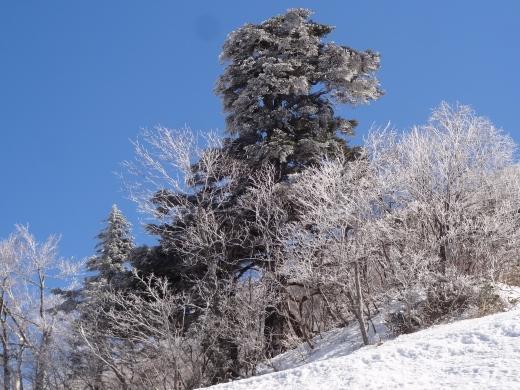 サクランボも樹氷もない山形/楽しい暮らしのエネルギー 05