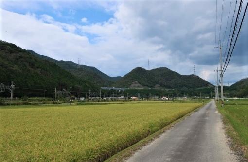 都市と農村と歴史が共存する街、三田市での挑戦!