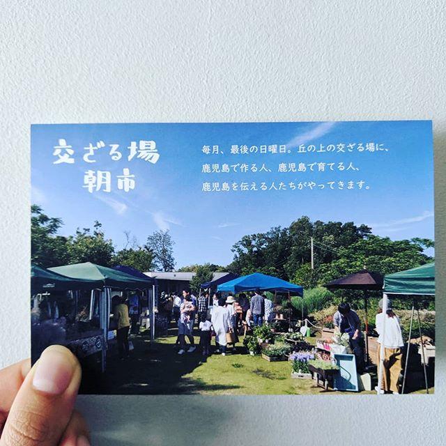 交ざる場朝市〜秋の収穫祭〜