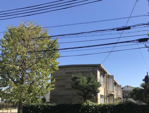 CITY FARM MARKET| 旧宮塚町住宅 開催!(12/7)