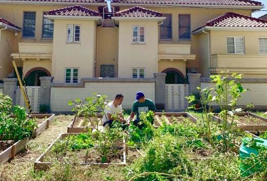 旧宮塚町住宅の農園「CITY FARM」の利用希望者向けワークショップ&オリエンテーション行います!
