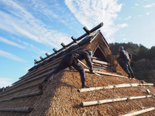 茅葺き屋根を守り・育てる一員になりませんか?