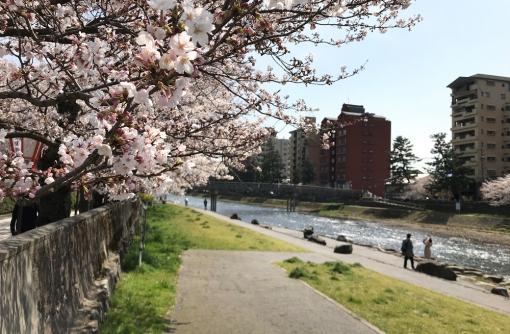 (4/3付)【金沢】飲食店テイクアウト情報まとめ