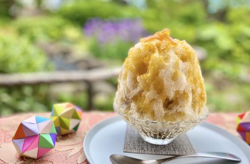 期間限定「のし梅かき氷」と「のし梅パンケーキ」