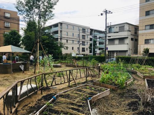 旧宮塚町住宅の農園「CITY FARM CLUB」の利用希望者を追加募集。