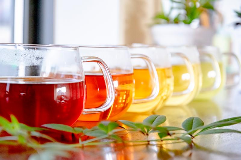 お気に入りと出会うお茶体験を。「MY FAVORITE TEA」