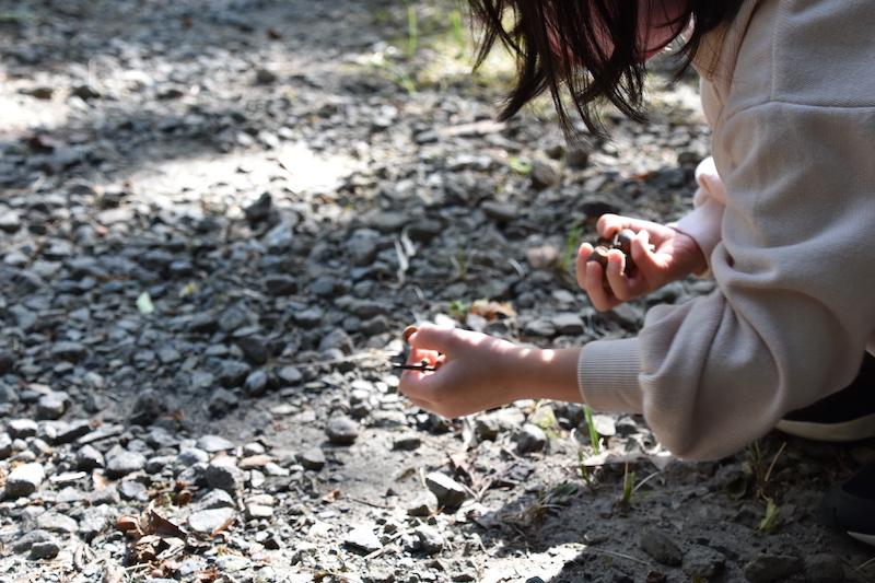 【開催中〜11/15まで】美山クラフトウィーク