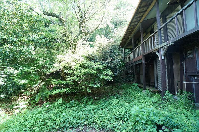 鎌倉R計画|よみがえった「森の図書室」(前編)
